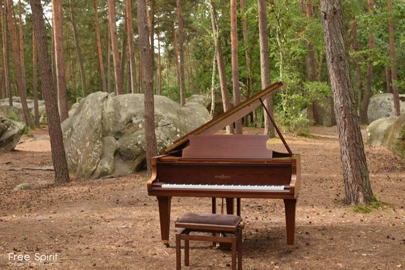 Art de la réussite - piano dans la forêt tournage clip